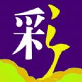 金泰国际彩票网站官方app v1.0