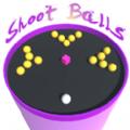 投篮圆池游戏安卓版 v1.0