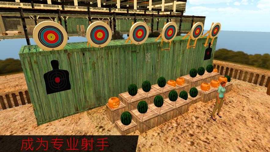 目标射击王游戏图1
